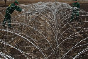Concertina razor wire network